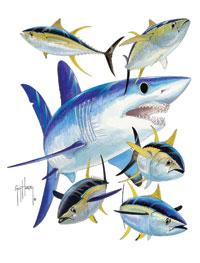 669487c9 mako shark short sleeve. MTH1201 (WHT) white s, m, l, xl, 2x, 3x (BLK)  black m, l, xl, 2x, shark collage